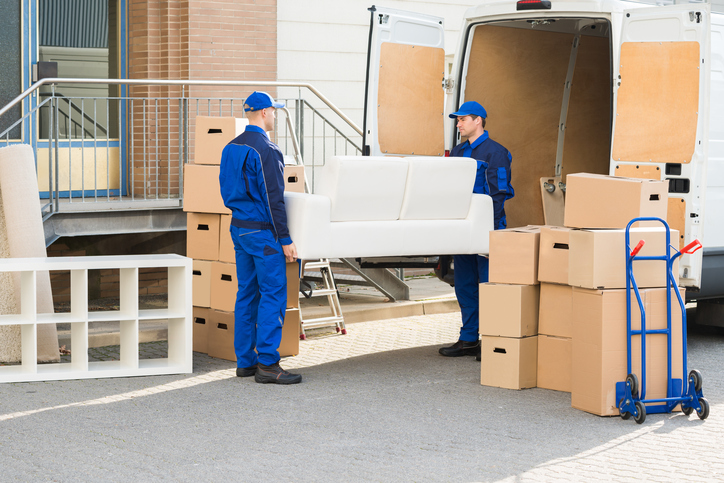 Reasons behind the popularity of moving companies